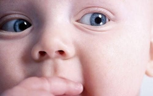 9 productos para bebés que las madres recomiendan