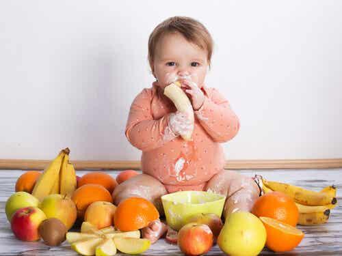 Las comidas ideales para tu bebé