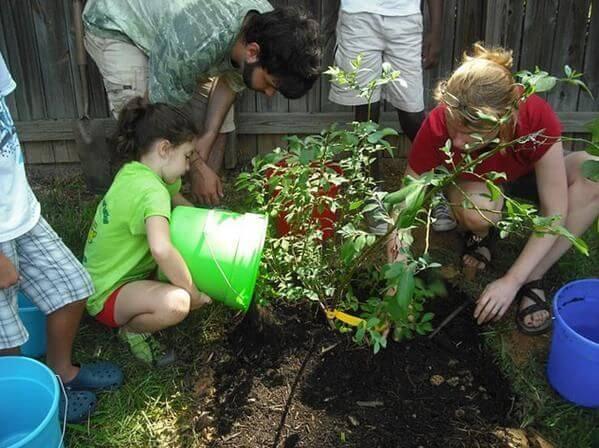 ¿Cómo incentivar el cuidado del medio ambiente en los niños?
