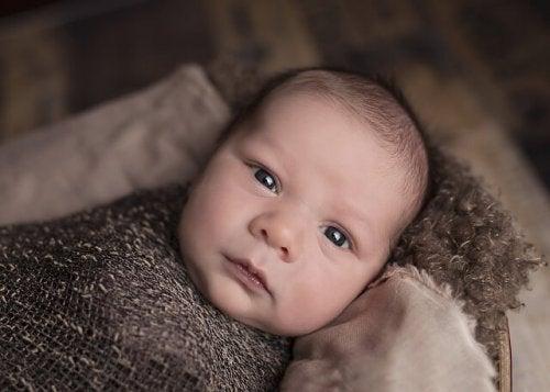 El sorprendente cerebro de un bebé