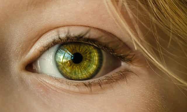 La importancia de las visitas al oftalmólogo