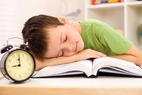 Muchos padres consideran inútil que los niños hagan deberes en el verano.