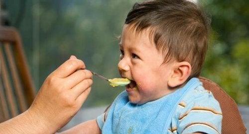 Las primeras comidas del bebé: ¿cómo incorporar sólidos a su dieta?