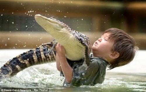 Miedo a los animales: ¡Soluciónalo!