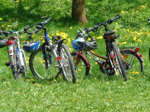 bicycles-6895_960_720