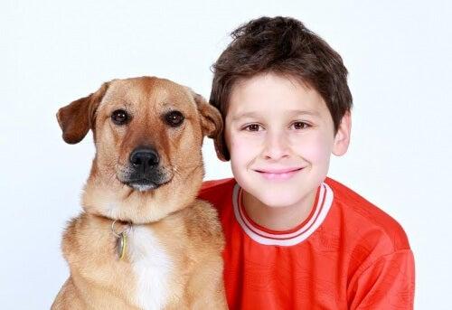 Cuál es la edad apropiada para tener una mascota