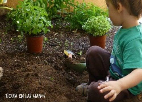 Agricultura preescolar: Enseña a los niños a cultivar sus alimentos