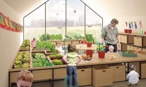 agricultura preescolar