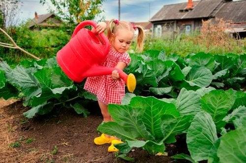 Siembra esa semilla que tu hijo tendrá que cultivar toda la vida