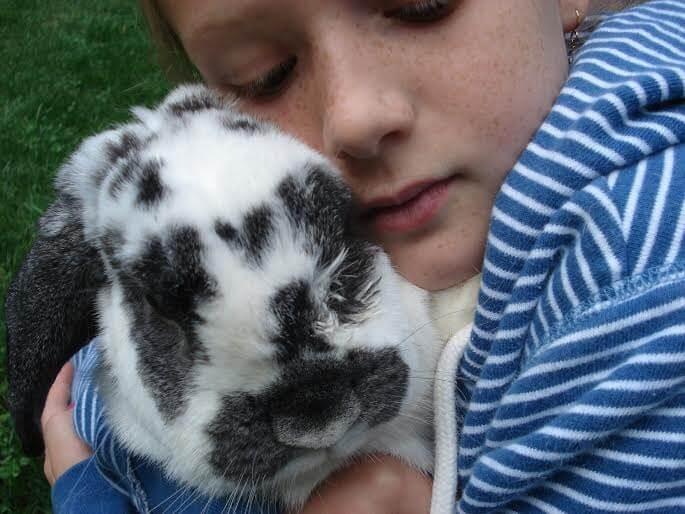 Cómo ayudar a mi hijo a enfrentar la pérdida de una mascota