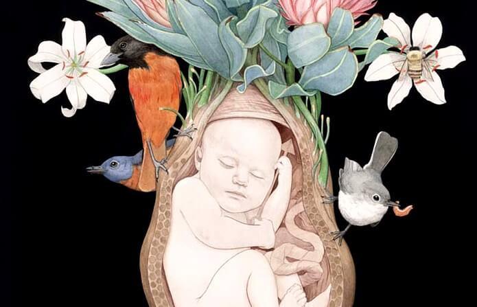 Educación emocional desde el útero materno: conecta con tu bebé