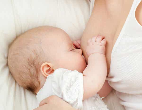 ¿Qué es la leche materna de transición? Información y consejos