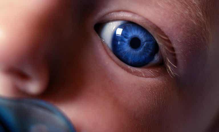 Te estoy mirando mamá: cuando el recién nacido te descubre