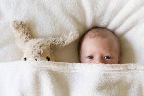 osito-bebé