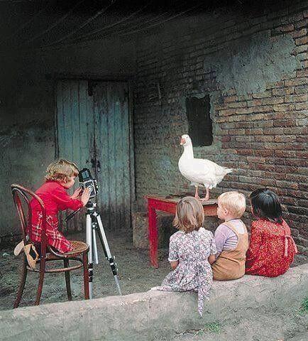 Deja que tus hijos tengan sus propios sueños