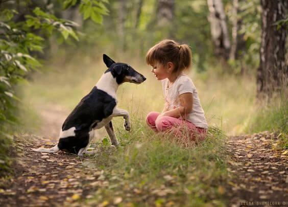 Tips para ayudar a tu hijo a conectar con la naturaleza