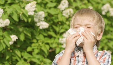 rinitis alérgica 2