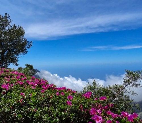 El cielo decembrino de Caracas, en el hemisferio sur.