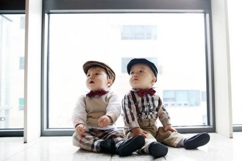 twins-1169064_960_720