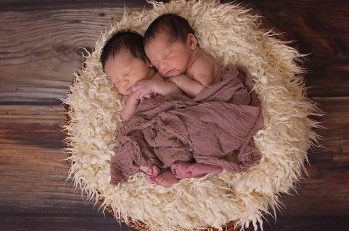 5 curiosidades sobre los gemelos