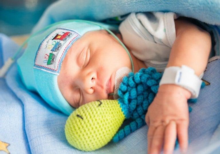 Pulpos de ganchillo para bebés prematuros: ¿por qué las unidades neonatales piden a los voluntarios hacerlos?