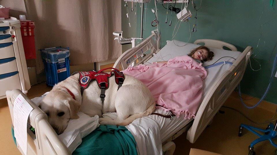 Sadie et son chien