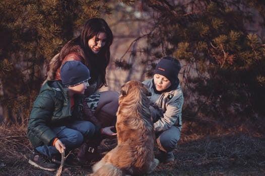 Una madre trendy jugando con sus hijos y un perro