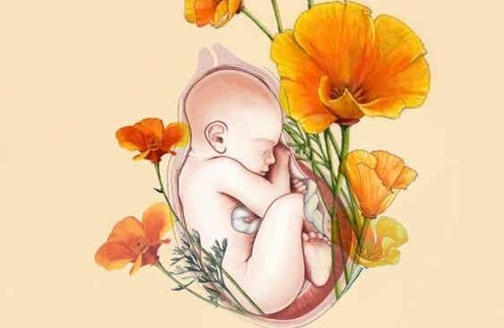Soy tu bebé y tú, mamá, eres mi hábitat, mi alimento, mi todo...