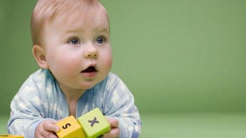 Cómo elegir los mejores juguetes para bebés de 6 a 12 meses