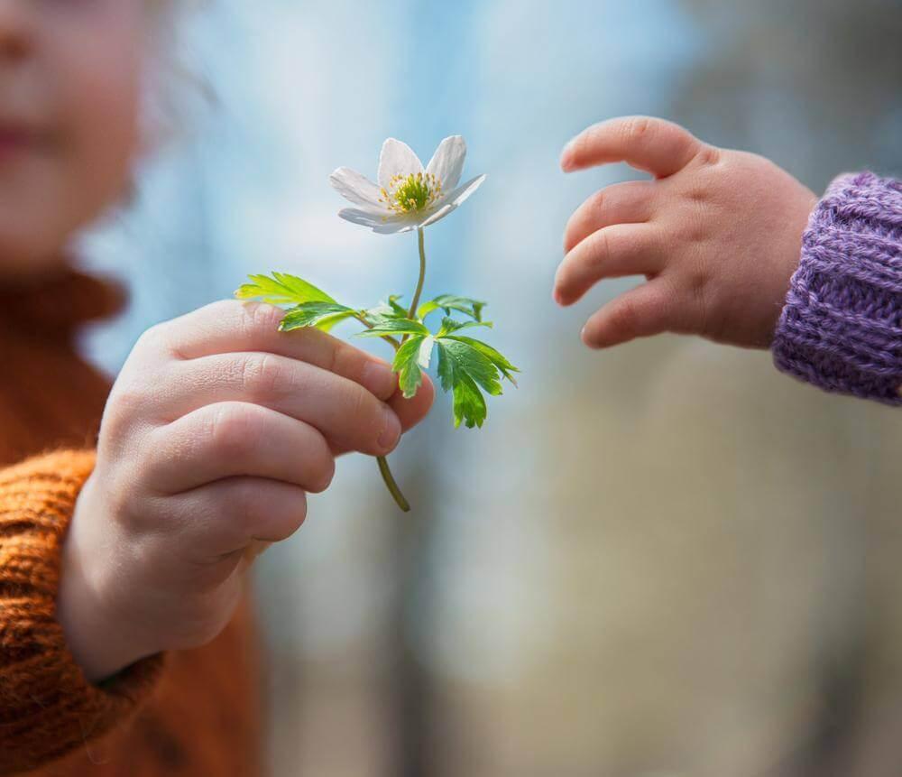El valor de la honestidad debe cultivarse desde la niñez.