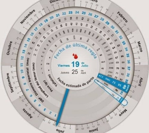 De irregular saber soy como fecha si ovulacion