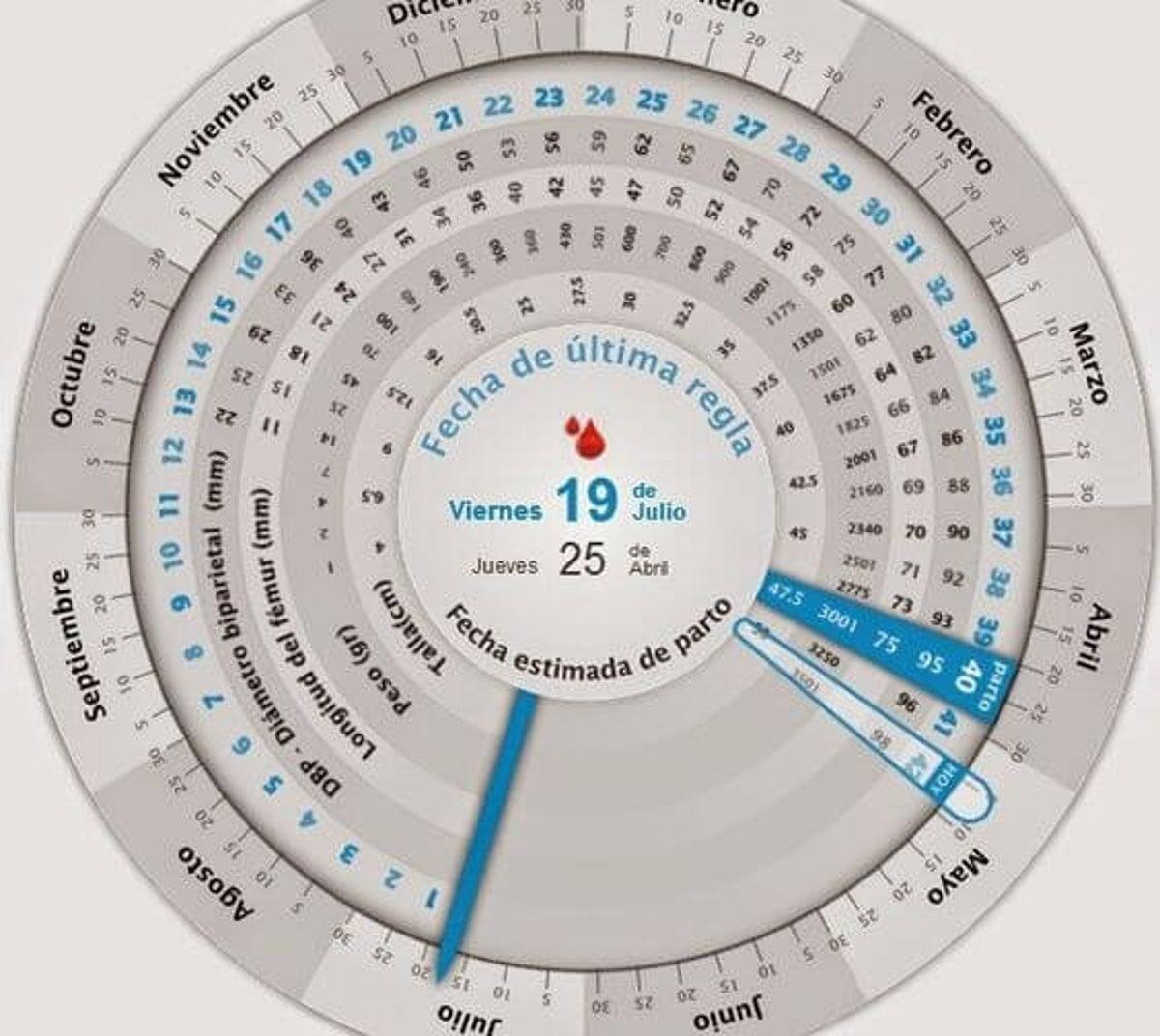 calendario para saber cuantas semanas de embarazo tienes