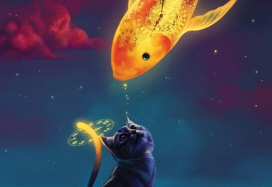 gato mirando un pez