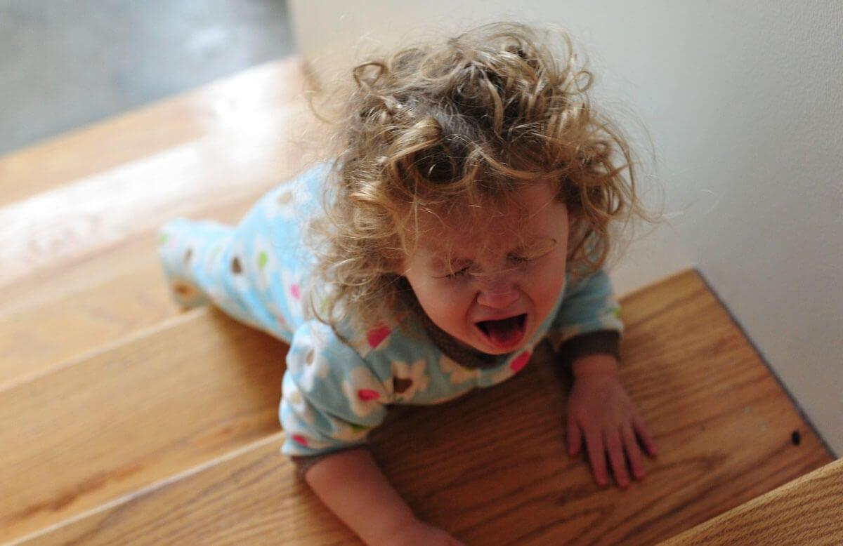 grandes emociones de los pequeños 3