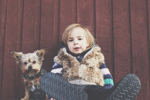 Las 5 mejores mascotas para los niños
