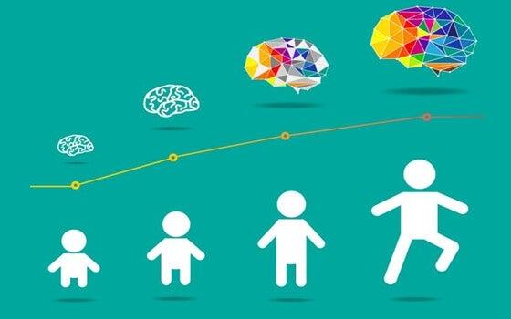 desarrollo cerebral de los niños
