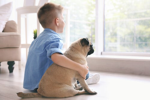 El miedo a los perros muchas veces proviene del desconocimiento.