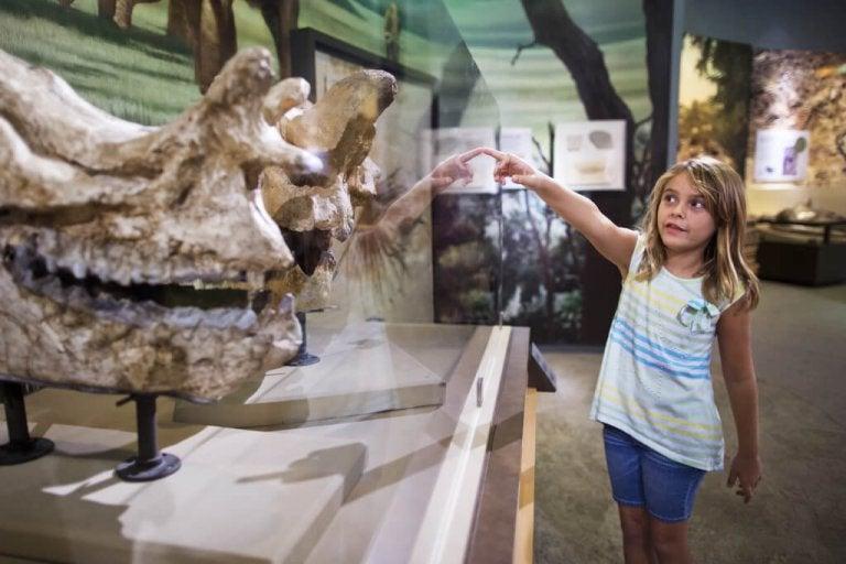 6 mejores museos para niños en Madrid