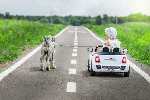Los coches eléctricos para niños son perfectos para jugar al aire libre.
