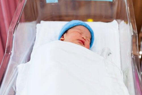 El sistema inmunitario del bebé