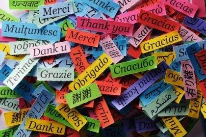 Métodos adecuados para la enseñanza de idiomas.