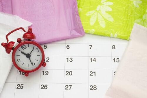 La amenorrea secundaria es la desaparición del período por un tiempo prolongado.