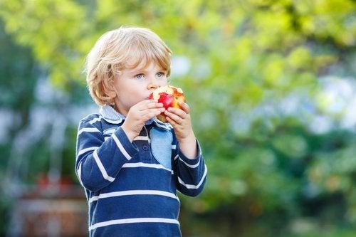 La alimentación saludable en los niños genera hábitos que le servirán de por vida.