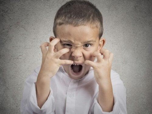 Las emociones primarias demuestran lo que pasa por la cabeza del niño en ese preciso momento.