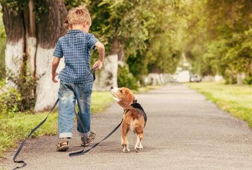 El perro es la primera opción al elegir una mascota para los niños.