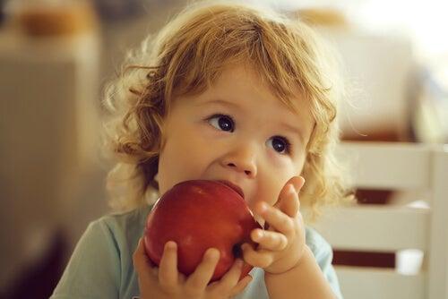 Existen ciertos alimentos para prevenir la anemia en niños.