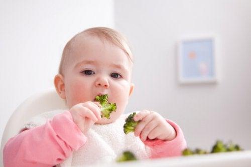 El método ACS postula que los bebés deben manipular los alimentos que ingieren.