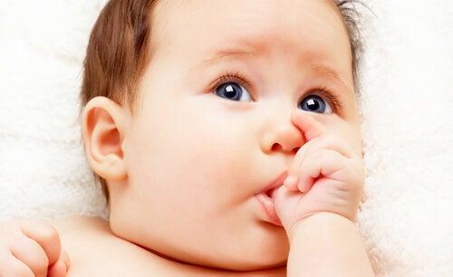 El reflejo de succión es propio de los primeros meses de vida del bebé.