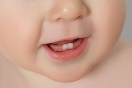 Primeros dientes del bebé: todo lo que debes saber