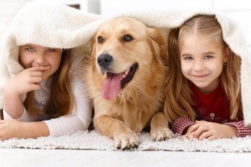 Beneficios de crecer con una mascota.